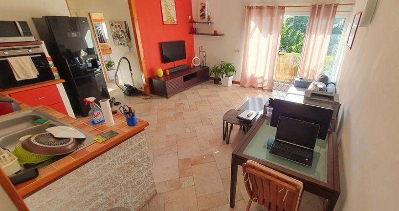 vente-appartement-f2-au-7emekm-big-0