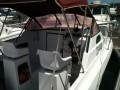 vends-coque-catamaran-750m-x-240-2-x-150-cv-evinrude-a-reviser-small-3