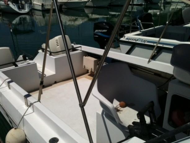 vends-coque-catamaran-750m-x-240-2-x-150-cv-evinrude-a-reviser-big-4