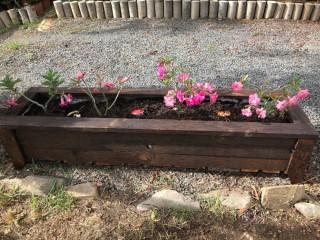 A vendre des jardinières pour jardin
