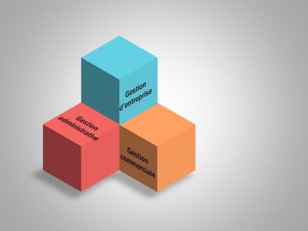 secretaire-patentee-propose-ses-services-pour-vous-liberer-de-votre-administratif-big-1